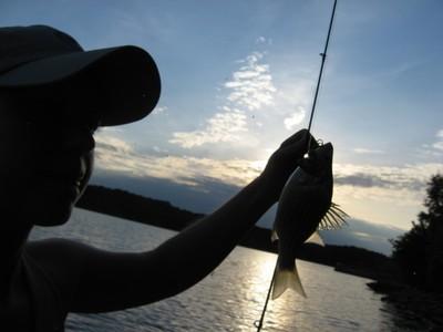 catch#2